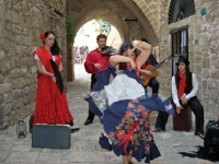 flamenko_03_6